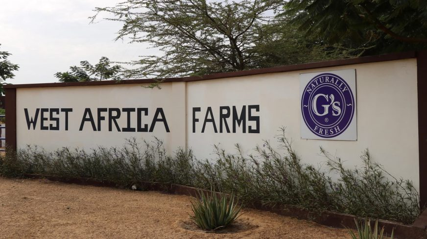 West Africa Farms
