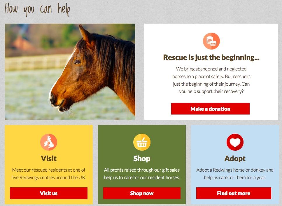 Screenshot of Redwings website
