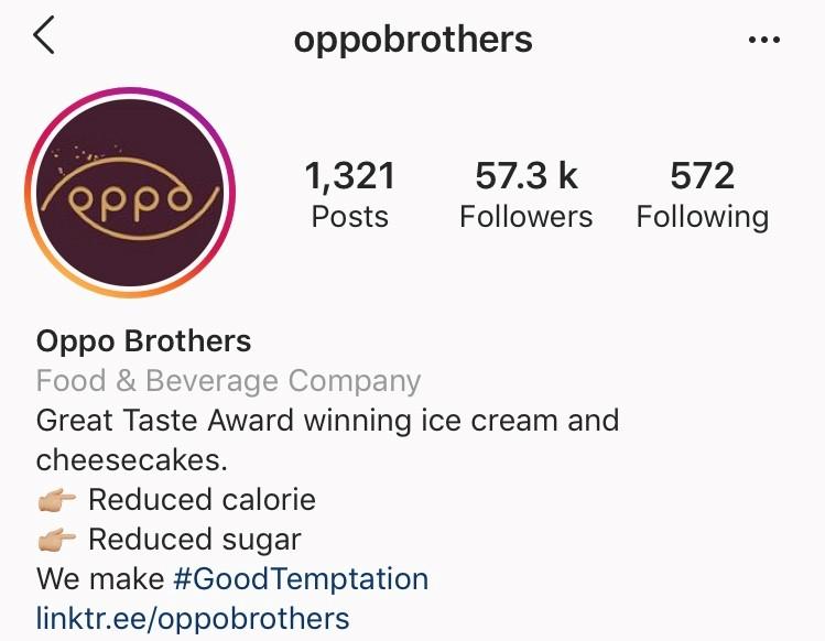 Example of Instagram Bio
